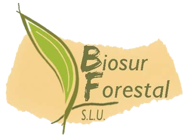 Biosur Forestal – Trabajos Forestales